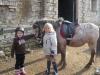 Pohoda s poníkem