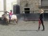 Výuka jízdy na koni - lonžování