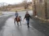 Procházka s poníkem